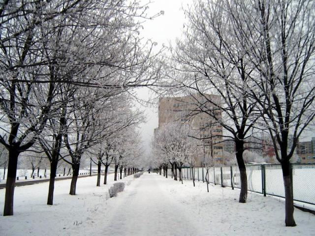 Город Нетишин зимой. Фото блогера из Нетишина zalgalina. К сожалению, не знаю, как ее зовут по-настоящему, но видно, что она любит свой город