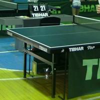 ялта_теннисный стол Tibhar