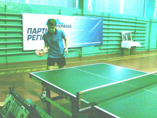 настольный теннис Нетишин