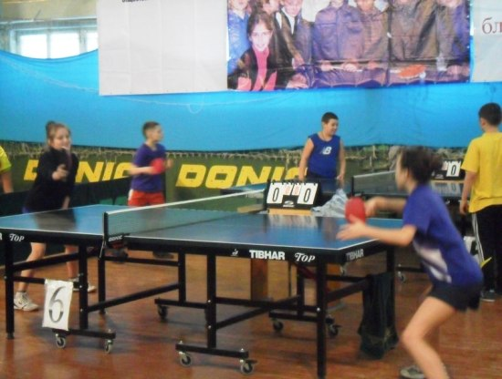 настольный теннис в Хортице
